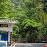 新北市休閒旅遊 土城桐花公園 照片
