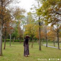 西莉亞玩樂人生在國家衛生研究院(落羽松) pic_id=3078948