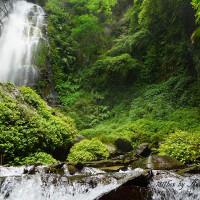 南投縣休閒旅遊 景點 景點其他 彩蝶瀑布 照片