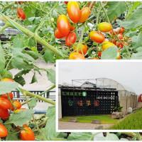 苗栗縣休閒旅遊 景點 觀光果園 愛情果園 照片