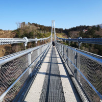 高雄市休閒旅遊 景點 景點其他 夢吊橋 照片