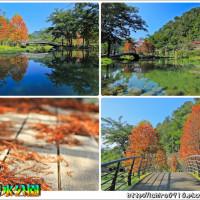 新竹縣休閒旅遊 景點 公園 內灣親水公園 照片