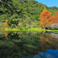 小風o在內灣親水公園 pic_id=3166768