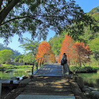 小風o在內灣親水公園 pic_id=3166769