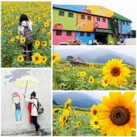 台東縣休閒旅遊 景點 景點其他 台東關山米國學校 照片