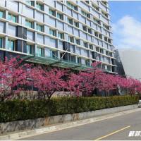 桃園市休閒旅遊 景點 景點其他 禾聯碩股份有限公司 照片