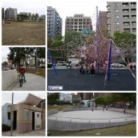 新竹縣休閒旅遊 景點 公園 繩索公園 照片