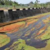 嘉義縣休閒旅遊 景點 景點其他 仁義潭水庫 照片