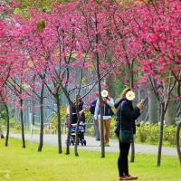 台中市休閒旅遊 景點 公園 崴立機電股份有限公司中科分公司 照片