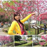 桃園市休閒旅遊 景點 公園 莒光公園 照片