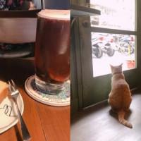 台北市美食 餐廳 咖啡、茶 咖啡館 聞山咖啡永春有貓店 照片