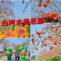 台南市休閒旅遊 景點 公園 白河區林初埤木棉花道 照片
