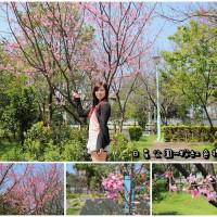 桃園市休閒旅遊 景點 公園 日星公園 照片