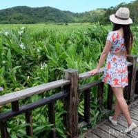 屏東縣休閒旅遊 景點 景點其他 東源國家重要濕地、哭泣湖 照片