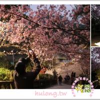 台北市休閒旅遊 景點 景點其他 碧山巖圓覺寺 照片