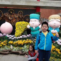 台北市休閒旅遊 景點 公園 2018士林官邸菊展「菊世遨遊」 照片