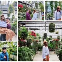 新竹縣休閒旅遊 景點 觀光花園 藝花源-台灣花鳥園 照片