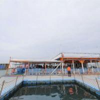 澎湖縣休閒旅遊 景點 海邊港口 澎湖花火節 照片