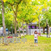 嘉義市休閒旅遊 景點 公園 嘉義中央廣場 照片
