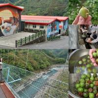 桃園市休閒旅遊 景點 景點其他 砂崙子部落 照片