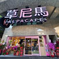 新北市美食 餐廳 咖啡、茶 咖啡館 草尼馬 Alpacafe 照片