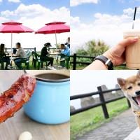 基隆市美食 餐廳 咖啡、茶 咖啡、茶其他 喵喵行動咖啡 照片