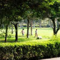 藍色起士在大肚運動公園 pic_id=5643829