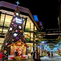 台北市休閒旅遊 景點 觀光商圈市集 2014台北市區聖誕佈置 照片