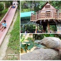 新竹縣休閒旅遊 景點 森林遊樂區 森林鳥花園 照片