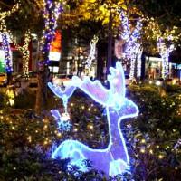 台北市休閒旅遊 購物娛樂 購物中心、百貨商城 信義耶誕城 照片
