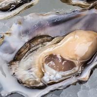 給你最尊榮的享受!台北晶華酒店推出「頂級魚子醬生蠔宴」,讓你品味舌尖上的奢華滋味。