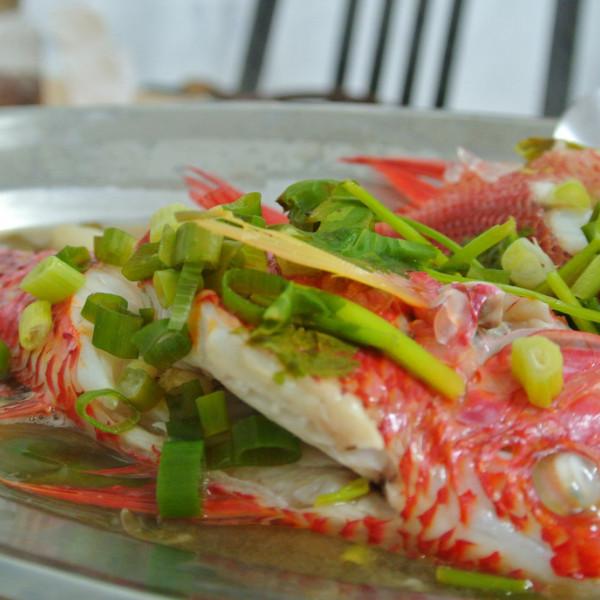 屏東縣 美食 餐廳 異國料理 泰式料理 阿美泰式活海鮮