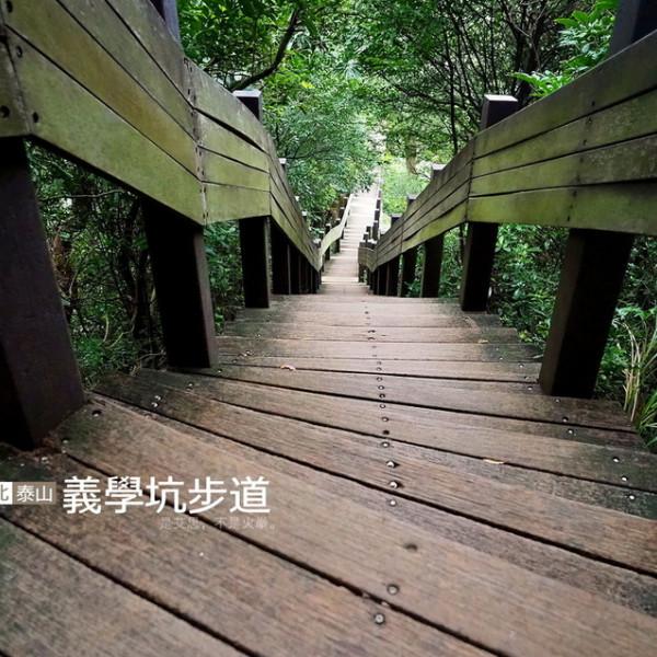 新北市 觀光 公園 義學坑步道
