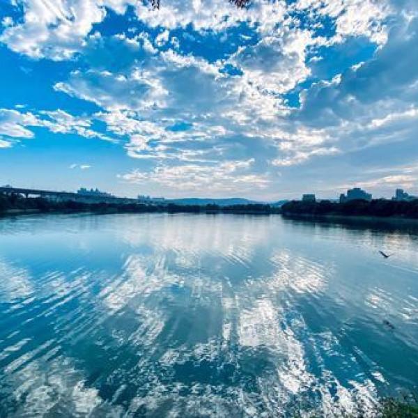 桃園市 觀光 觀光景點 蘆興景觀埤塘生態公園