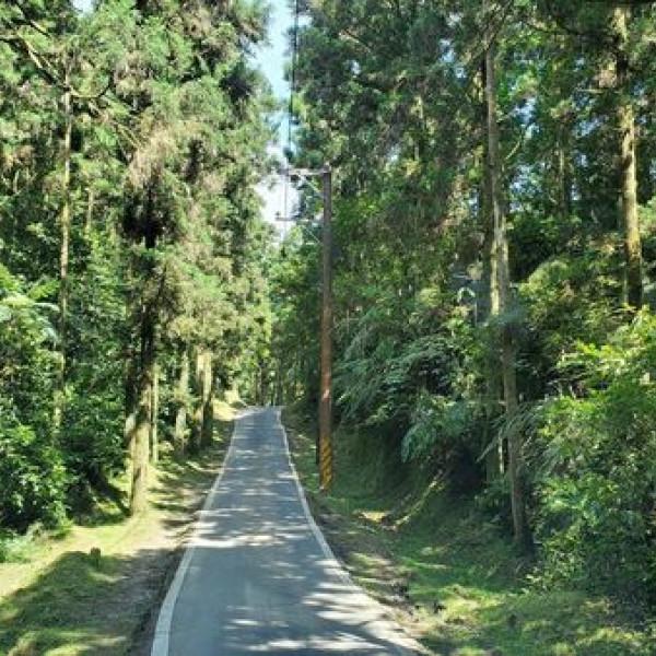 新北市 觀光 休閒娛樂場所 淡蘭古道坪溪段