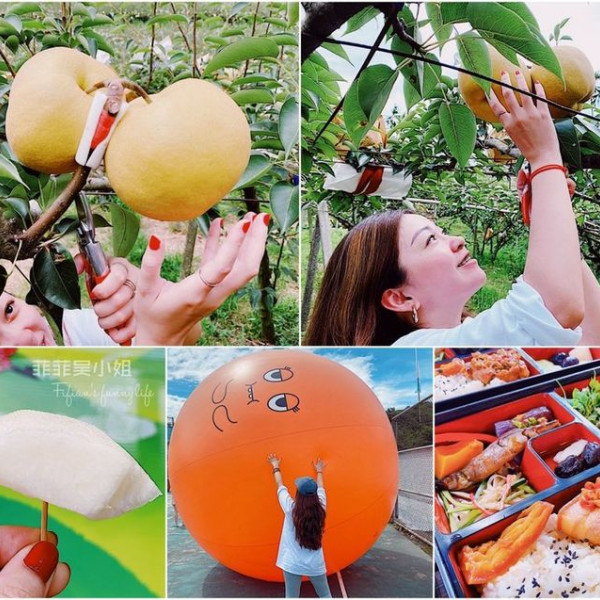 台中市 觀光 觀光工廠‧農牧場 梨之鄉休閒農場