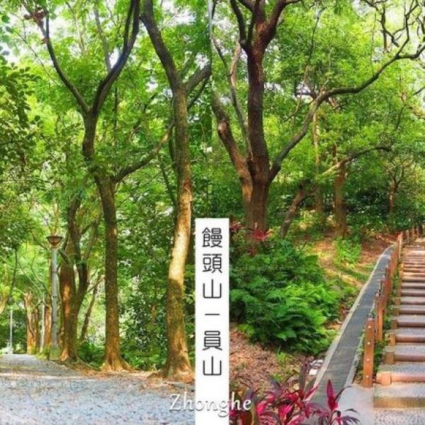 新北市 觀光 公園 自強公園(員山)