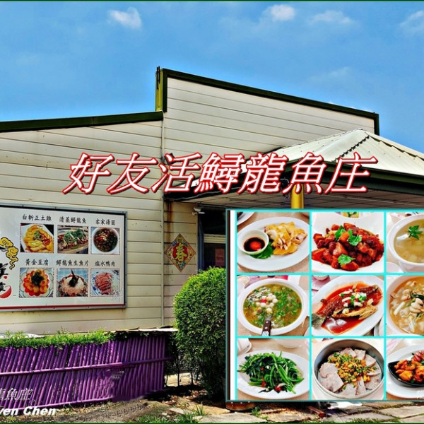 苗栗縣 餐飲 客家料理 好友活鱘龍魚庄