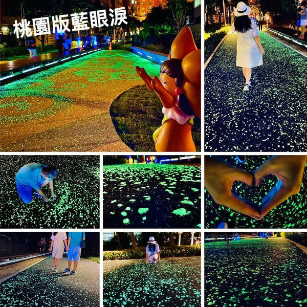 桃園市 觀光 觀光景點 桃林鐵馬道星光步道