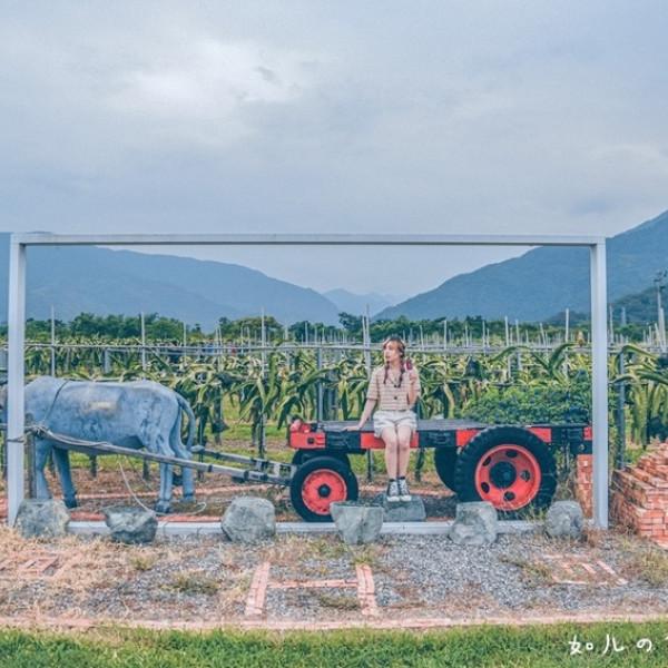 台東縣 觀光 觀光工廠‧農牧場 阿裕紅龍果園