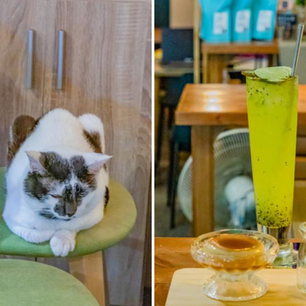 高雄市 餐飲 咖啡館 咖啡強