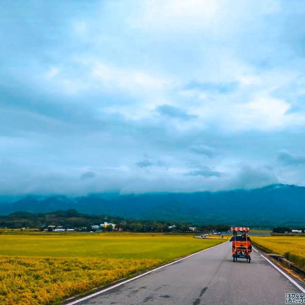 台東縣 觀光 觀光景點 天堂路、伯朗大道