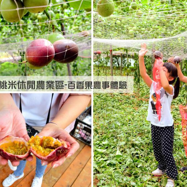 南投縣 觀光 觀光景點 「桃米休閒農業區