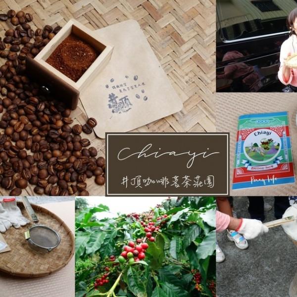 嘉義縣 觀光 觀光景點 井頂咖啡茗茶莊園