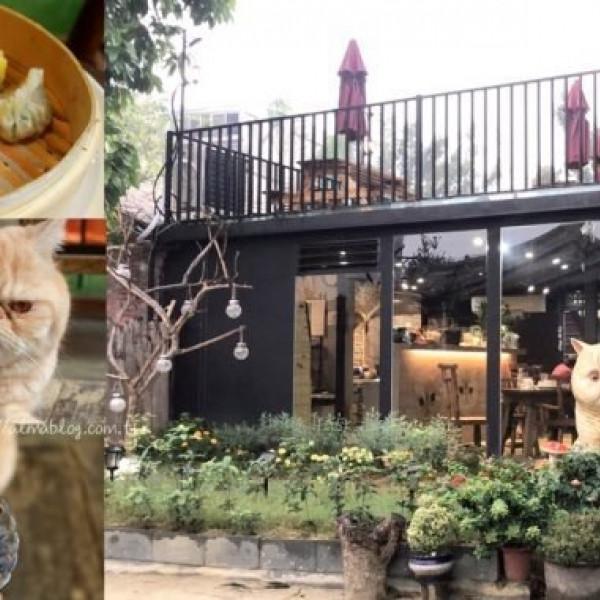 桃園市 餐飲 港式粵菜 游家肥貓 動物友善餐館