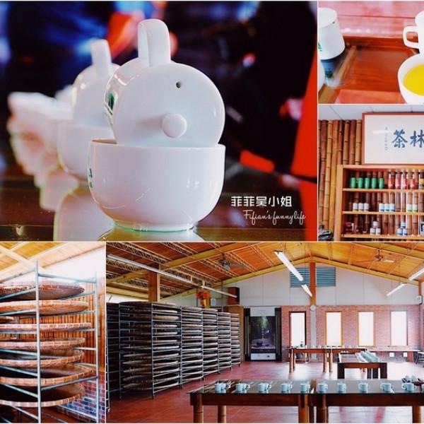 嘉義縣 觀光 觀光工廠‧農牧場 龍眼林茶工場