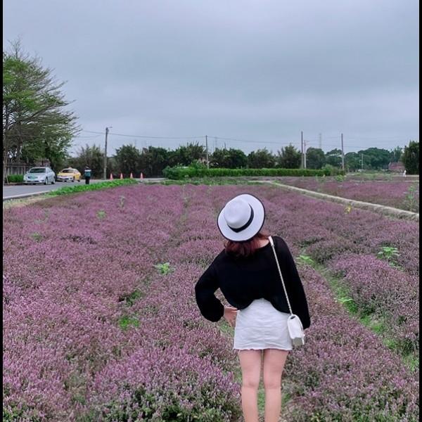 桃園市 觀光 觀光景點 禾山田農場