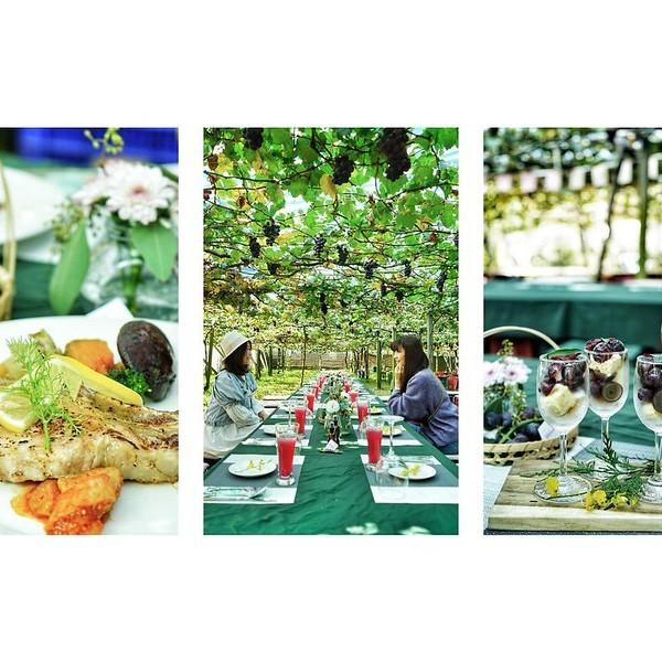 台中市 餐飲 主題餐廳 景觀餐廳 新社新峰農場