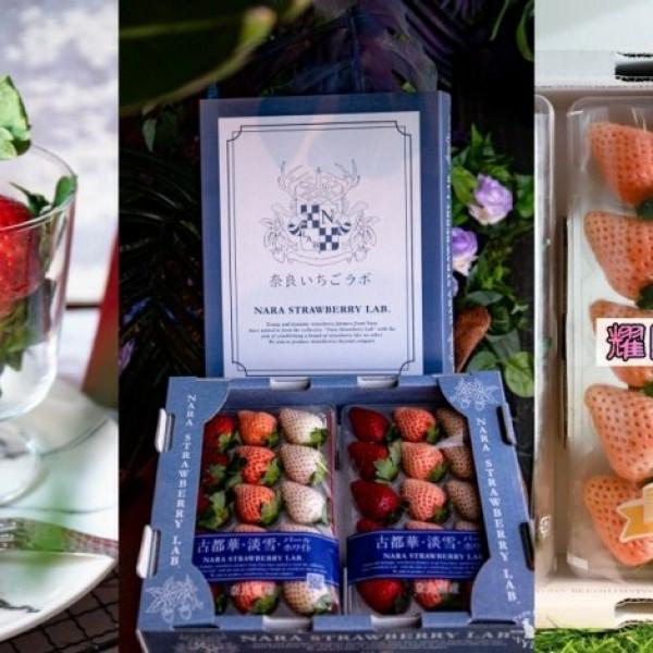 台中市 購物 特產伴手禮 耀聞水果世界