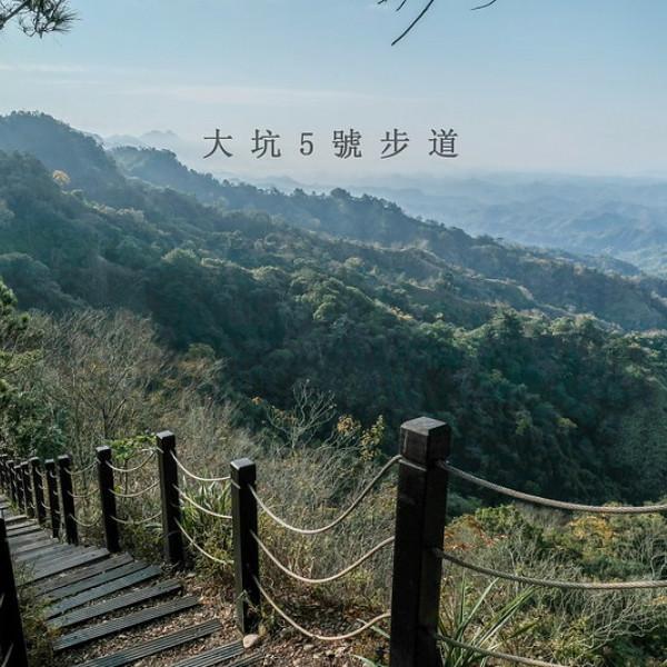 台中市 觀光 觀光景點 大坑5號登山步道